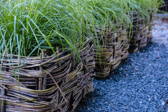 Things to do with Willow - Wattle Planters, Thinking Outside the Boxwood
