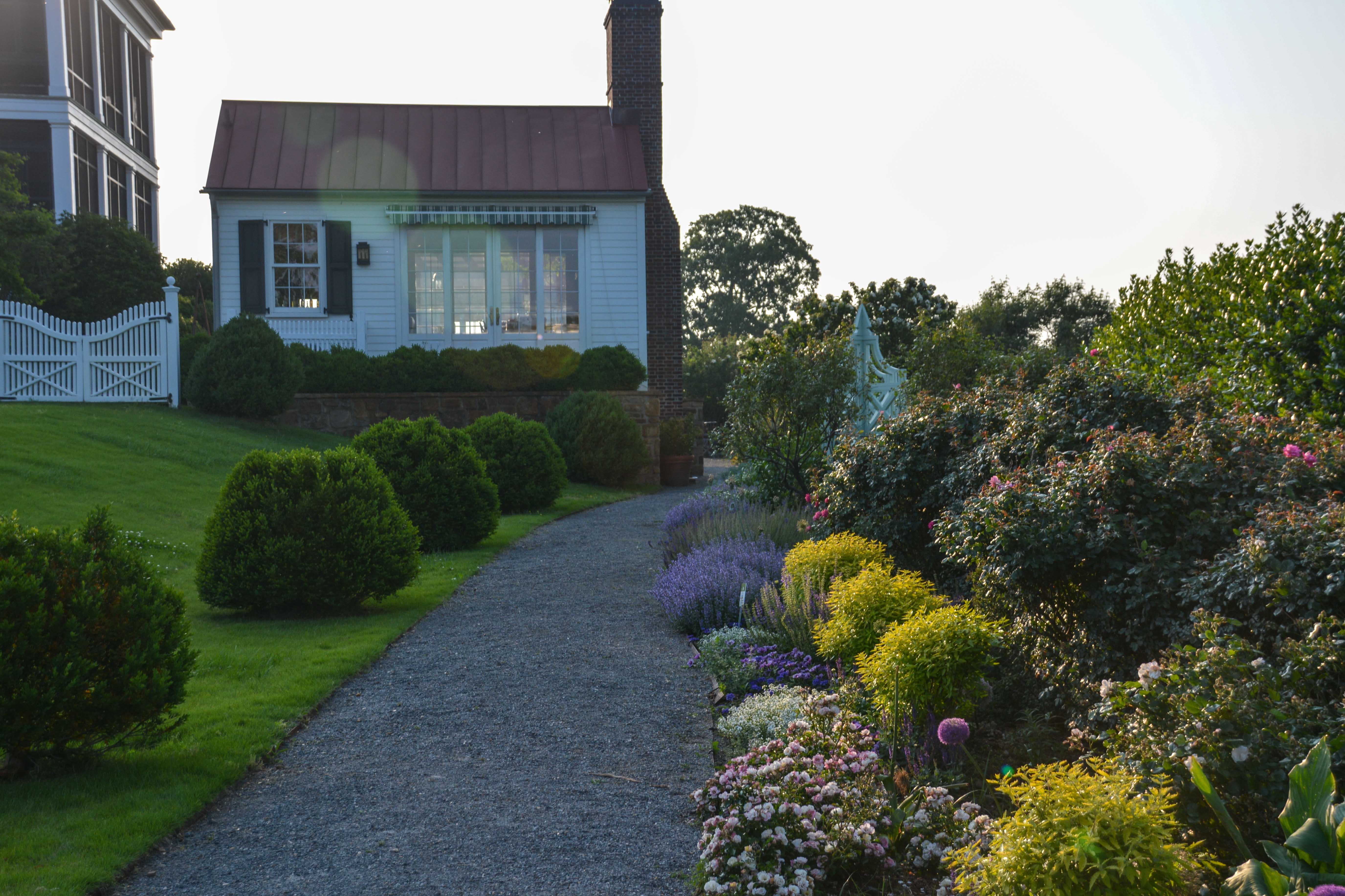 Twilight at Moss Mountain Farm, Thinking Outside the Boxwood