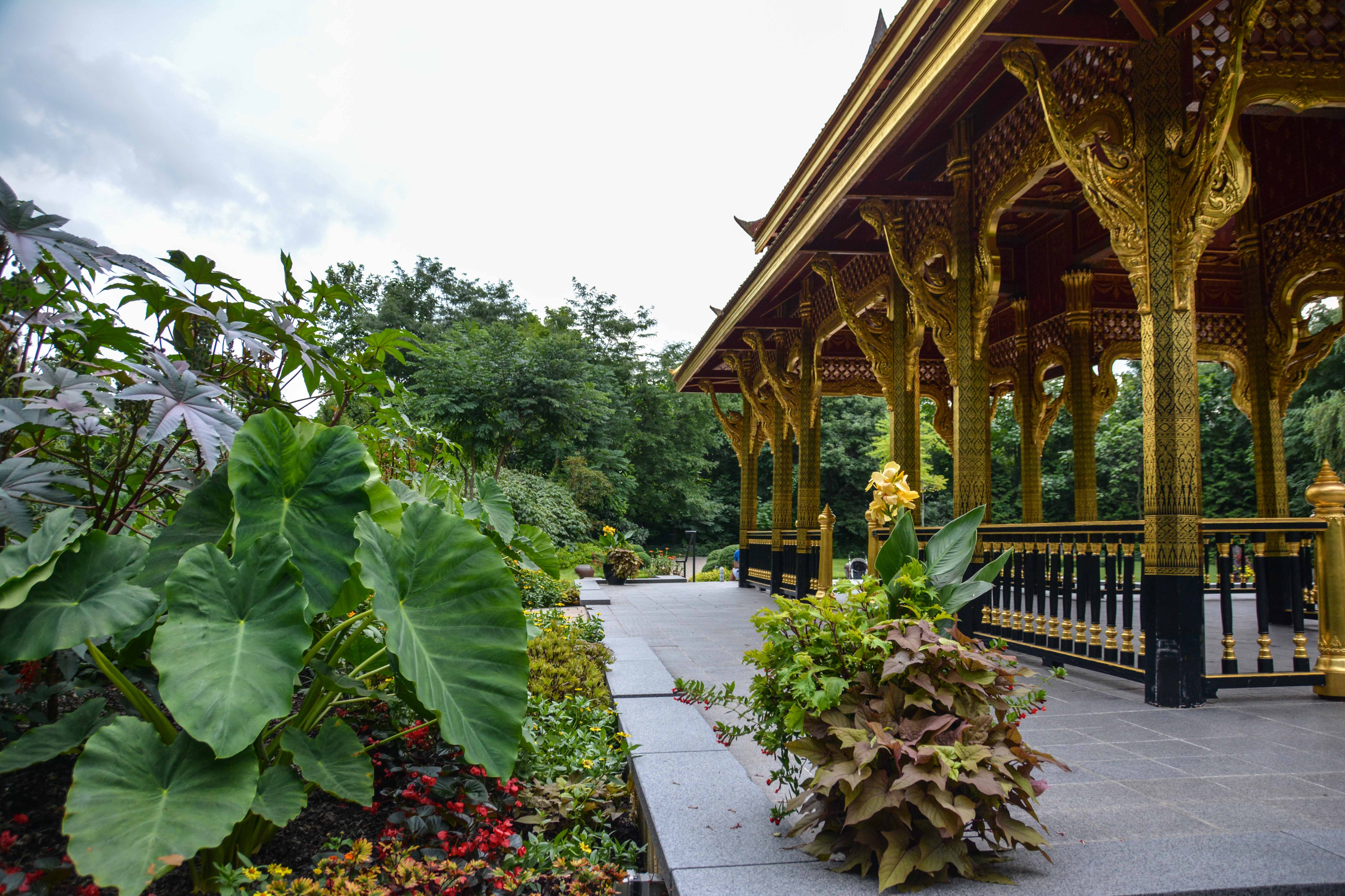 Olbrich Botanical Gardens,Thai Pavilion and Garden  - Madison Wisconsin, Thinking Outside the Boxwood
