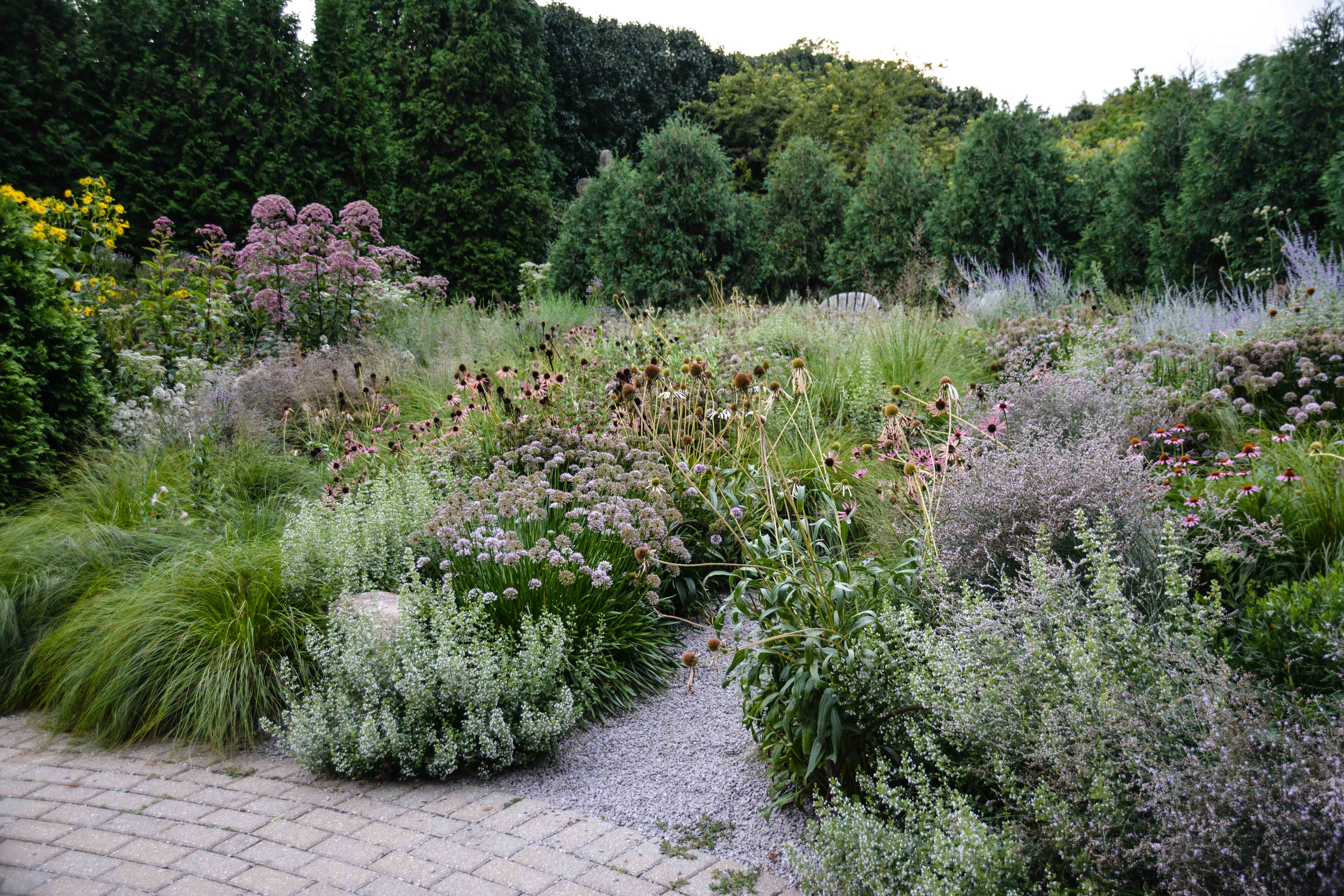 Olbrich Botanical Gardens, gravel garden- Madison Wisconsin, Thinking Outside the Boxwood