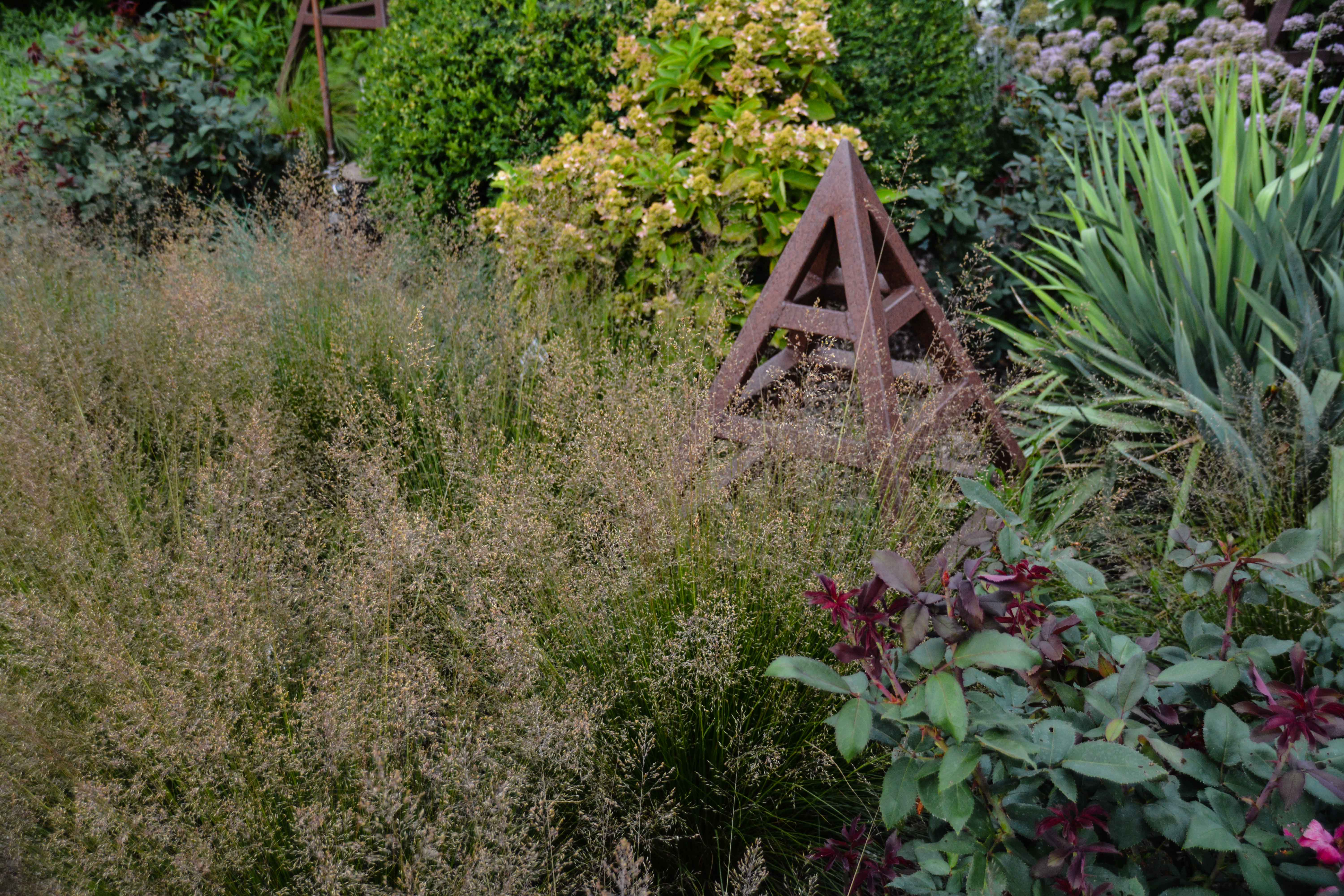 Sporobolus heterolepis, 7 Essential Ornamental Grasses, Thinking Outside the Boxwood