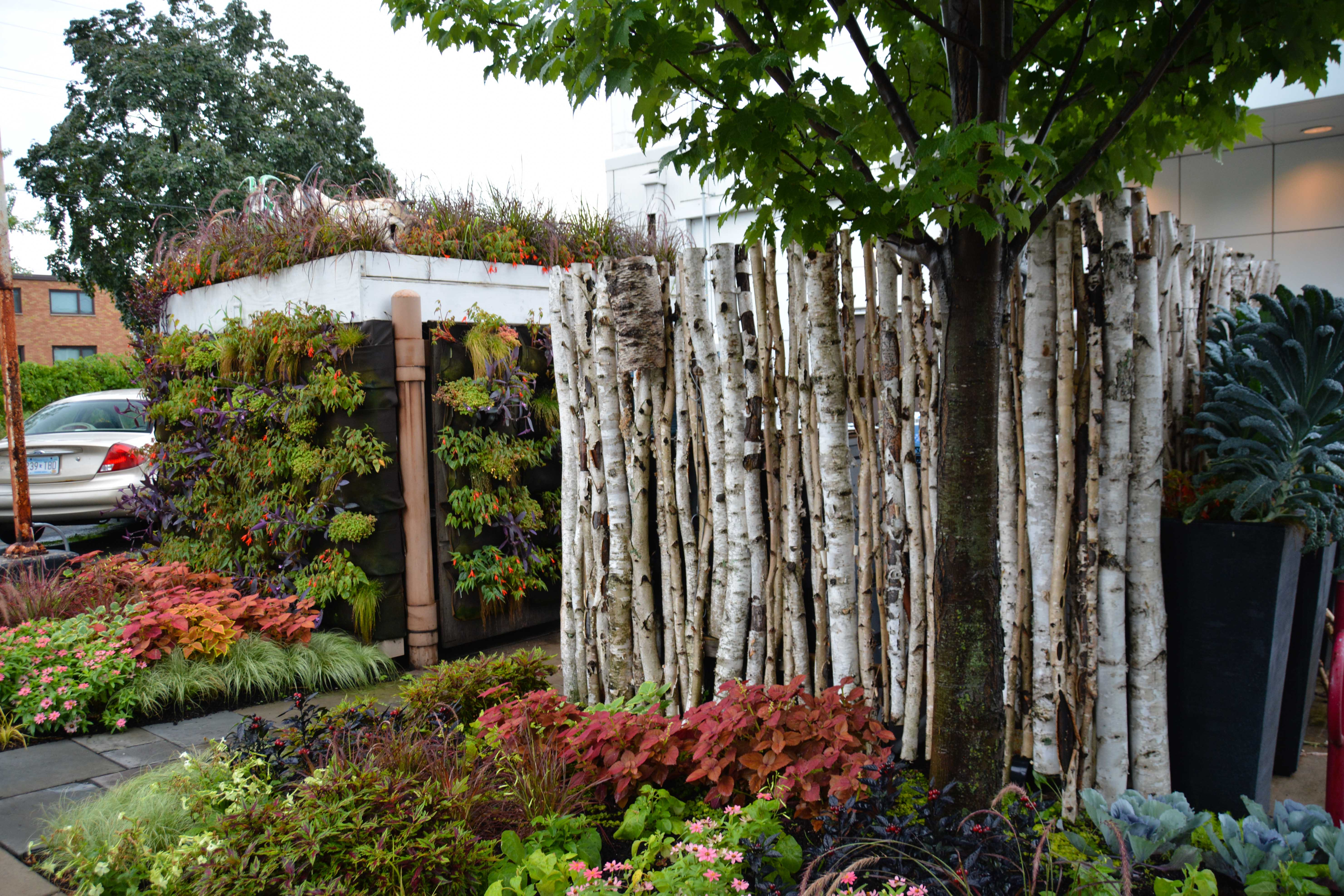 A visit to Tangletown Gardens and Wise Acres in Minneapolis, MN. Birch log and greenwall screening used to cover utilities - More images at Thinkingoutsidetheboxwood.com