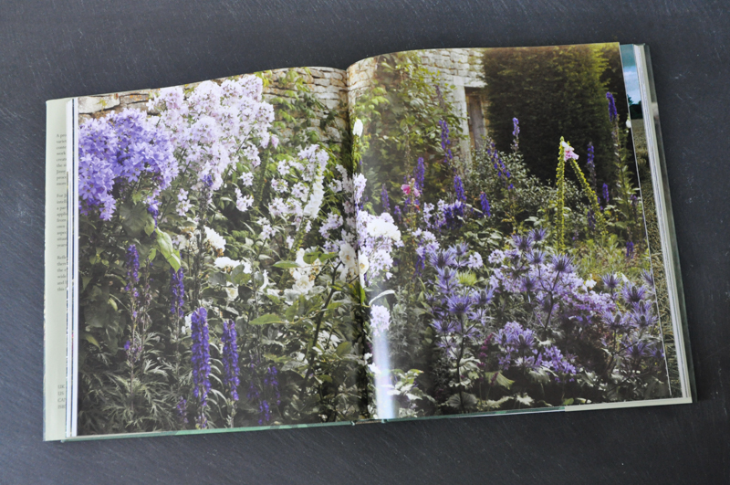 A Thoughtful Gardener: An Intelligent Approach to Garden Design by Jinny Blom, Thinking Outside the Boxwood
